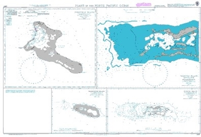 Picture of Plans in the North Pacific Ocean