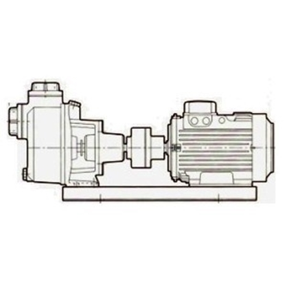 Picture of Close coupled selfpriming centrifugal pump