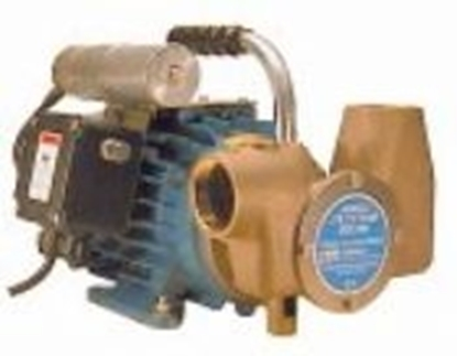 "Picture of Utility 80' 1½"" self-priming pump - 220V"