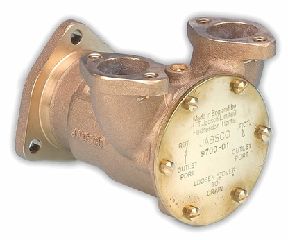"Picture of Jabsco 9700 flange mount 1"" pump"