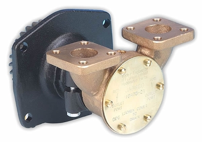 "Picture of Jabsco 10970-21 flange mount 3/4"" pump"