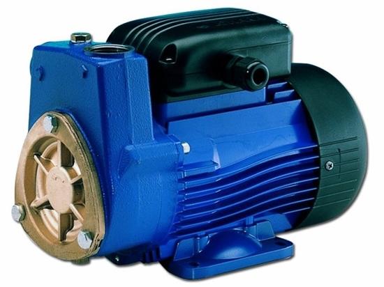 Picture of Lowara self-priming pumps SP