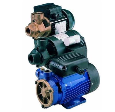 Picture of Lowara peripheral pumps P, PAB, PSA