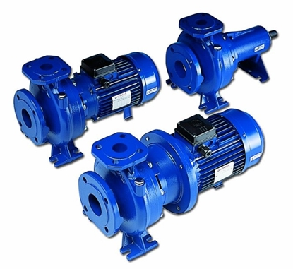 Picture of Lowara centrifugal pumps FH