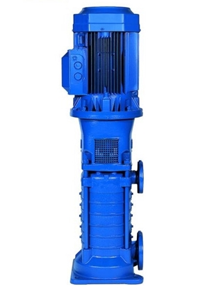 Picture of Lowara multi-stage vertical pumps TDB, TDV
