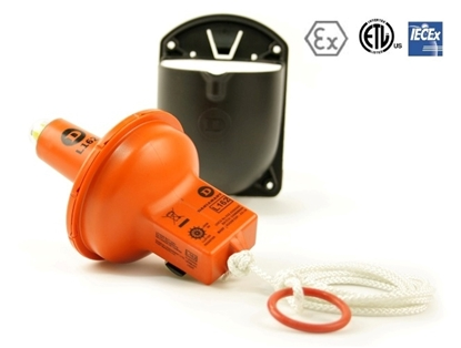 Picture of Daniamant ATEX L163 lifebuoy lights