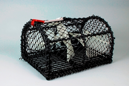 Picture of Crab pots