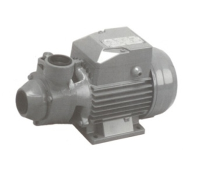 Picture of Close coupled PK series peripherical pump