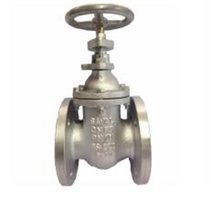 Picture of Flange gate valve FJ101-01