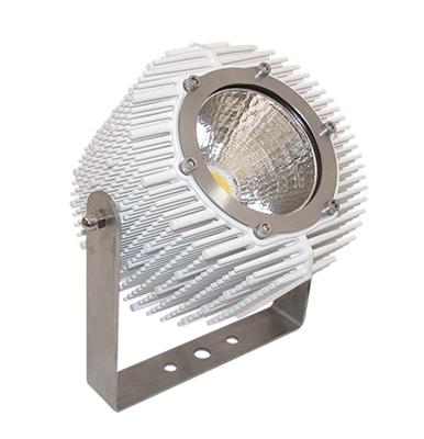 Projector LED FL40