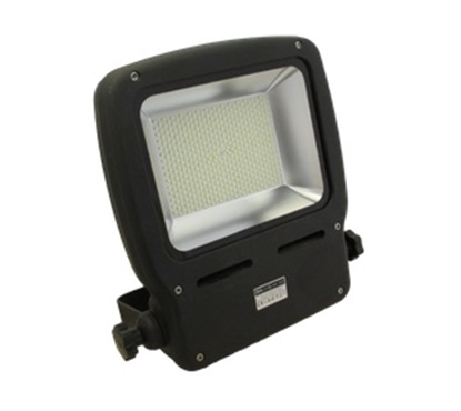 Picture of Nightsearcher Ecostar 100W floodlight