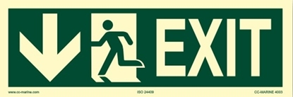 IMO Sign-exit down 30x10