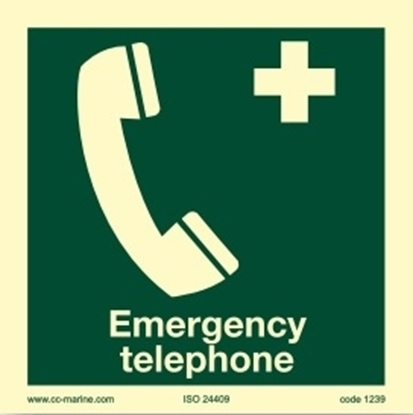 Picture of Emergency telephone